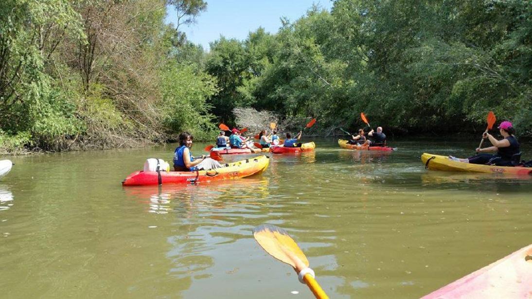 Kayak Guadiamar - Inmaculada Márquez Algaba