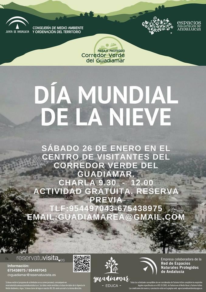 Cartel Día de la Nieve