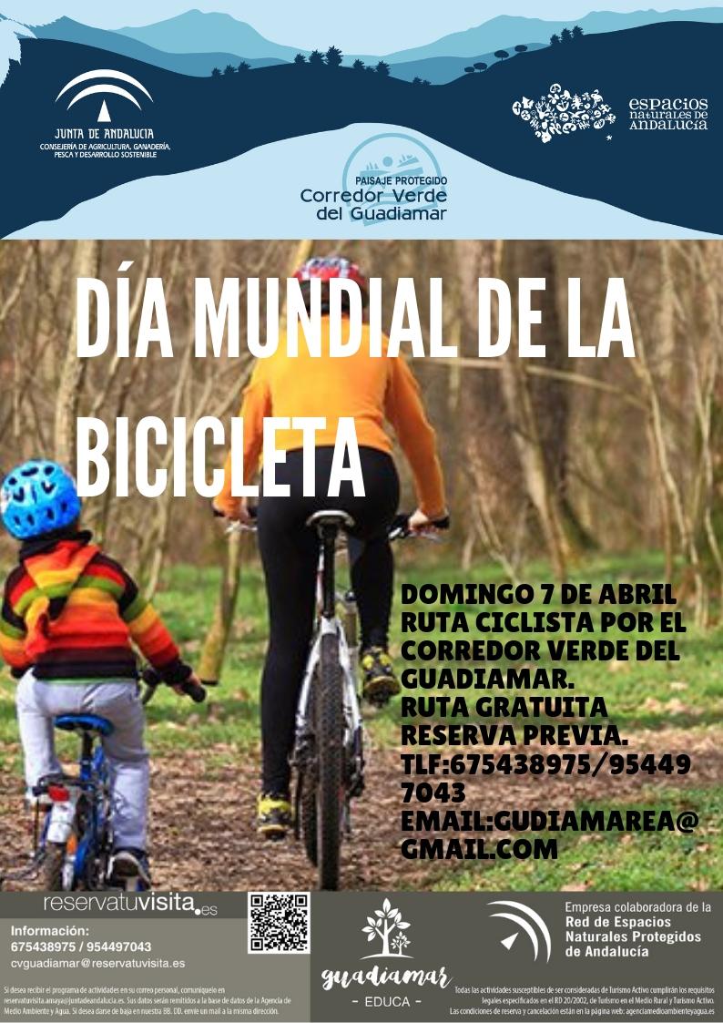 Cartel Día Mundial de la Bicicleta