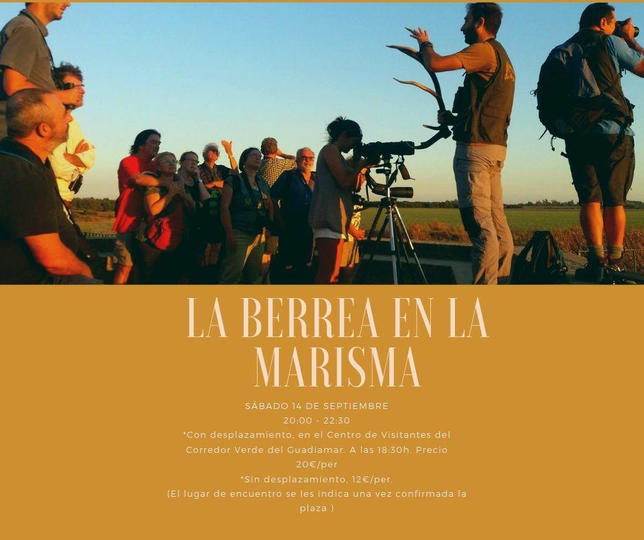 La berrea de la Marisma - Guadiamar Educa