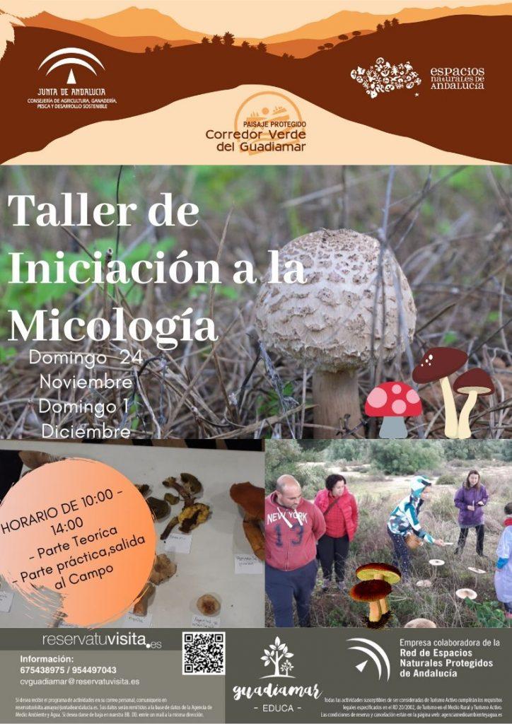 Taller Micología Noviembre en el Guadiamar