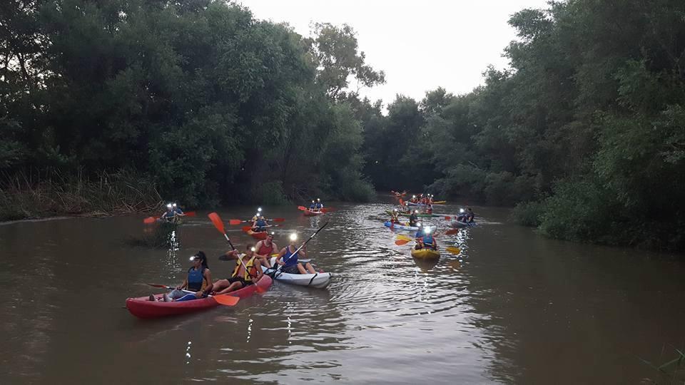 Kayak en el Guadiamar