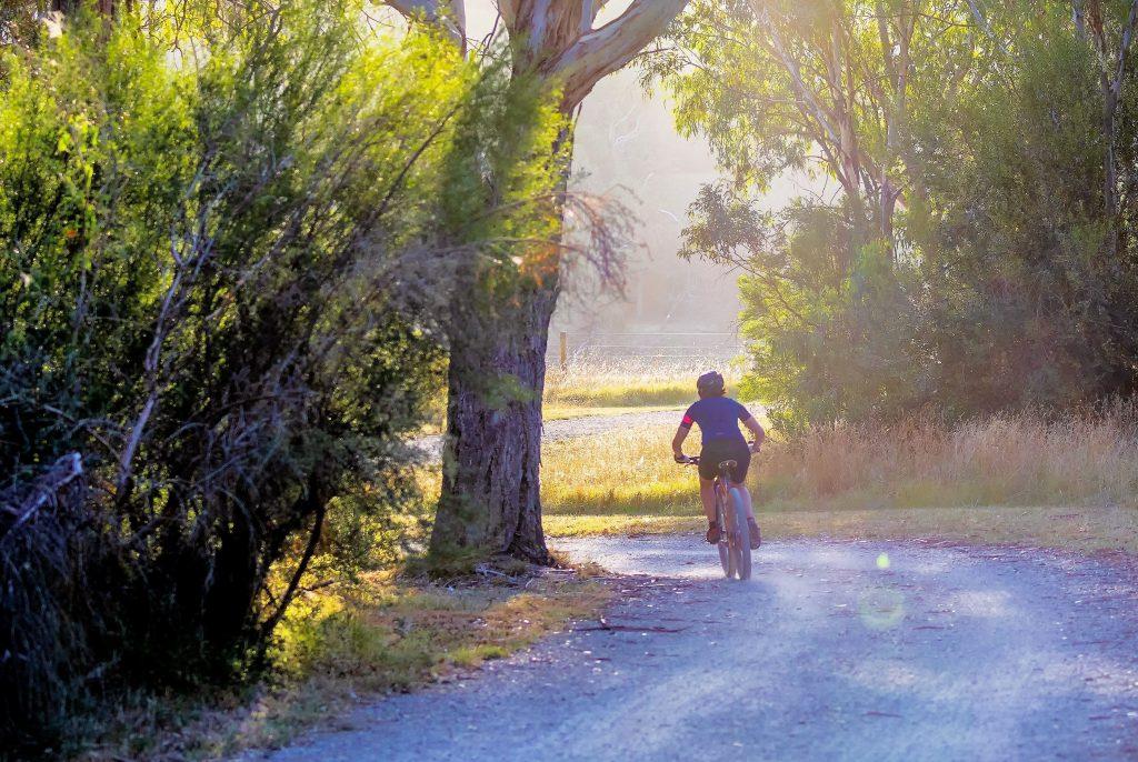 Bici Corredor Verde Guadiamar - Guadiamar Educa