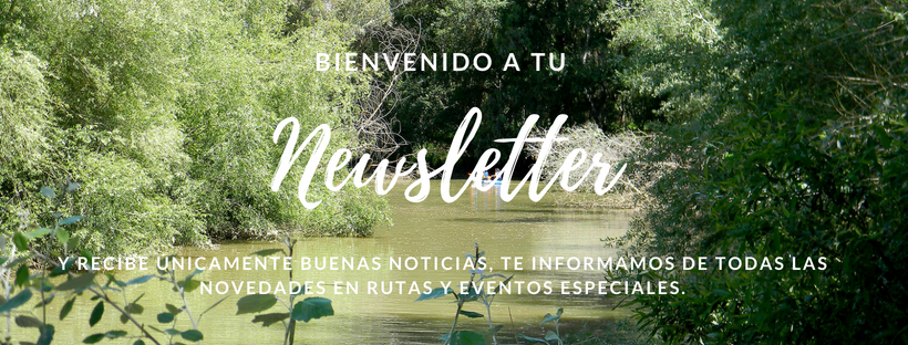 Newsletter Mensual Guadiamar Educa
